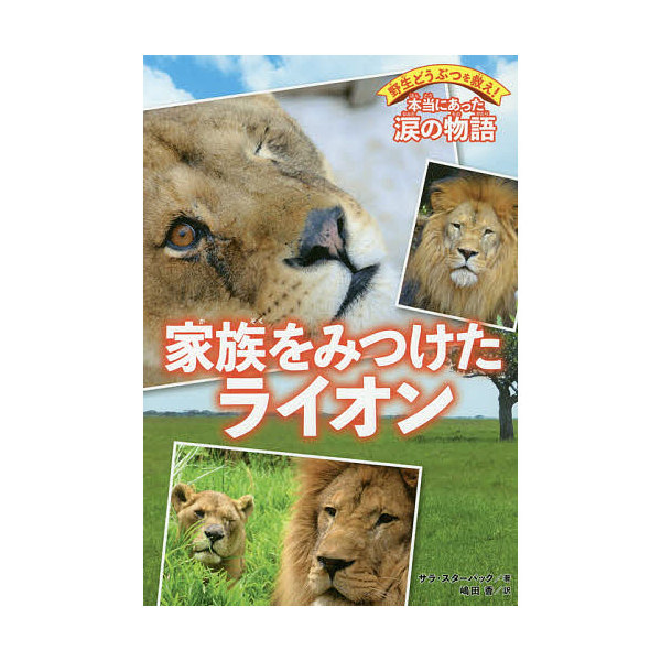 家族をみつけたライオン/サラ・スターバック/嶋田香