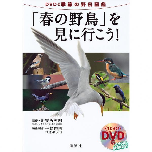 「春の野鳥」を見に行こう! DVD付季節の野鳥図鑑/安西英明