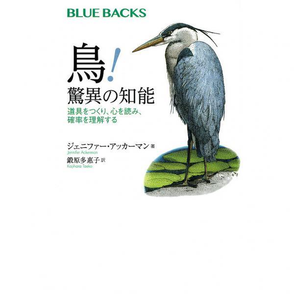 鳥!驚異の知能 道具をつくり、心を読み、確率を理解する/ジェニファー・アッカーマン/鍛原多惠子