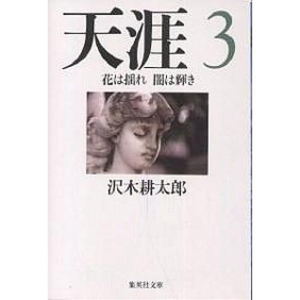 天涯 3/沢木耕太郎