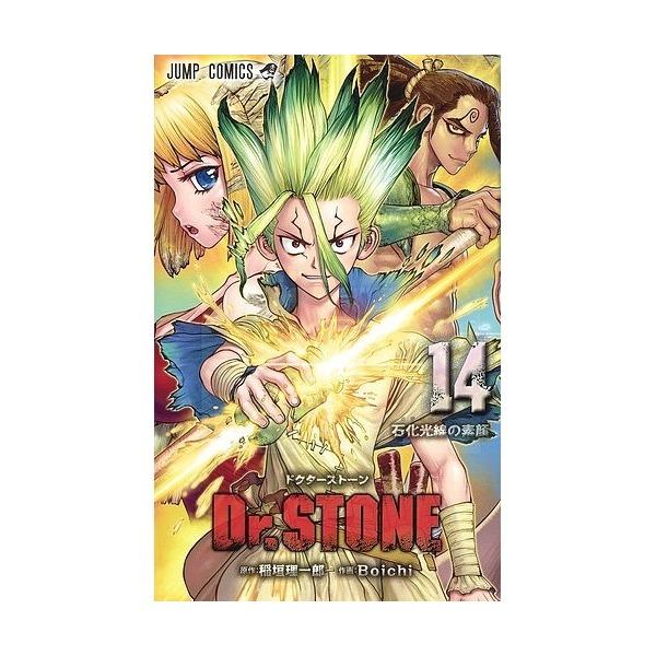 Dr.STONE 14/稲垣理一郎/Boichi