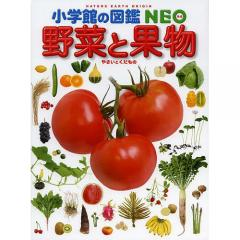 野菜と果物/板木利隆