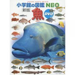 魚/井田齊/・執筆松浦啓一/・執筆藍澤正宏