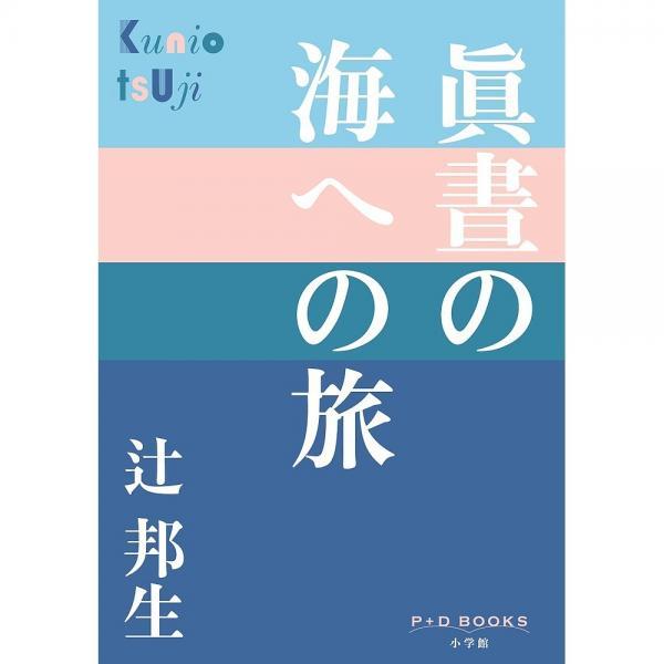 眞晝の海への旅/辻邦生
