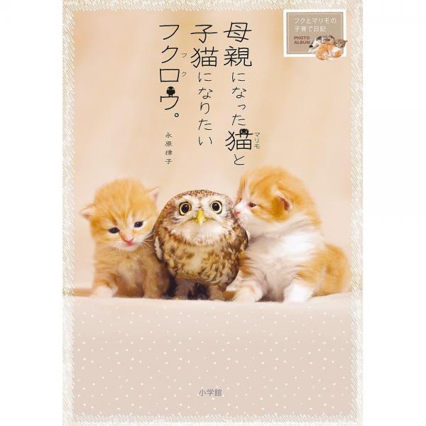 母親になった猫(マリモ)と子猫になりたいフクロウ(フク)。 フクとマリモの子育て日記/永原律子