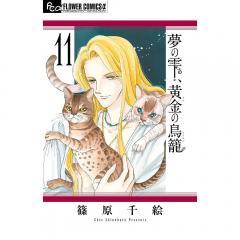 夢の雫、黄金(きん)の鳥籠 11/篠原千絵