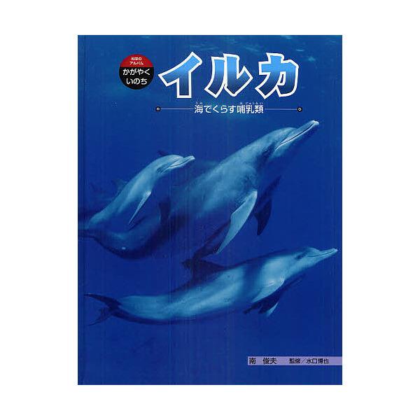 LOHACO - イルカ 海でくらす哺乳...