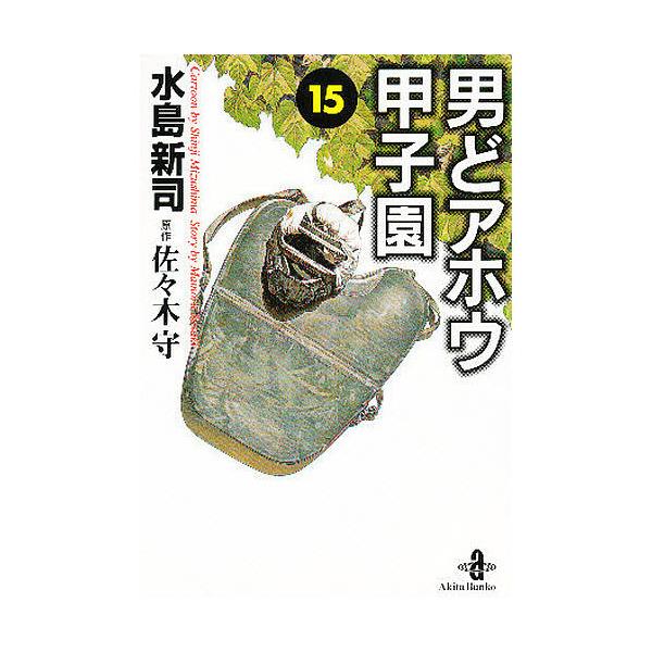 男どアホウ甲子園 15/水島新司/佐々木守