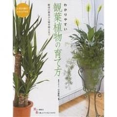 わかりやすい観葉植物の育て方 人気80種のカタログ付き 栽培の基本から寄せ植えまで