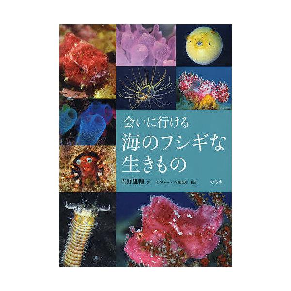 会いに行ける海のフシギな生きもの/吉野雄輔/ネイチャー・プロ編集室