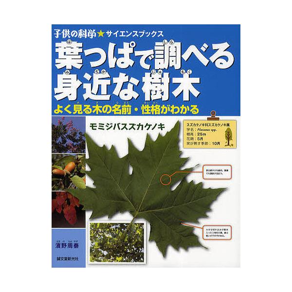 葉っぱで調べる身近な樹木 よく見る木の名前・性格がわかる/濱野周泰