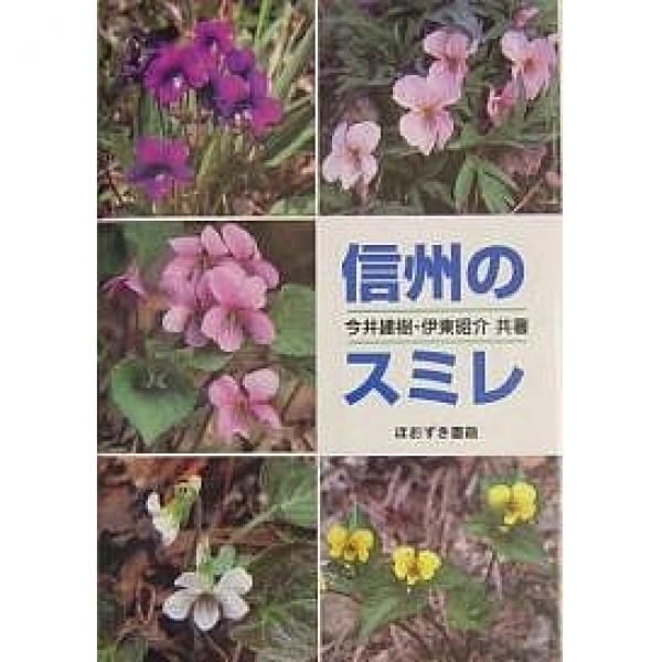 信州のスミレ/今井建樹/伊東昭介
