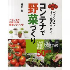 コンテナで野菜づくり ベランダですぐ始められる/藤田智