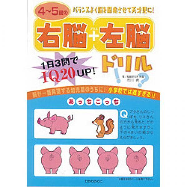 4~5歳の右脳+左脳ドリル 1日3問でIQ20UP!/市川希