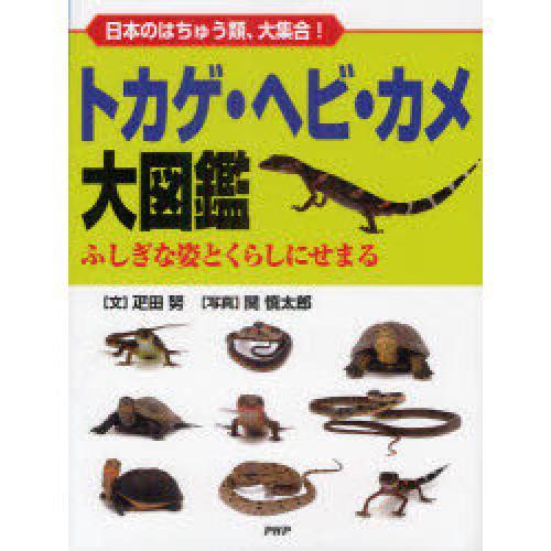 トカゲ・ヘビ・カメ大図鑑 日本のはちゅう類、大集合! ふしぎな姿とくらしにせまる/疋田努/関慎太郎