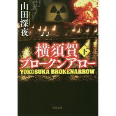 横須賀ブロークンアロー 下/山田深夜