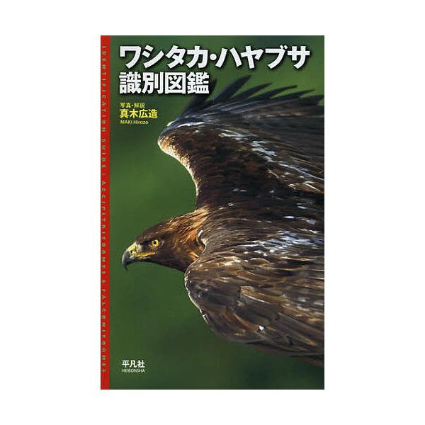ワシタカ・ハヤブサ識別図鑑/真木広造