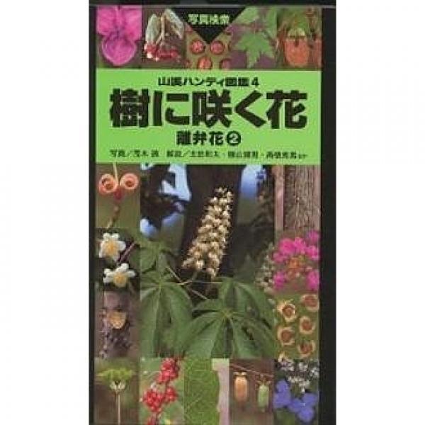 樹に咲く花 離弁花2/茂木透/石井英美