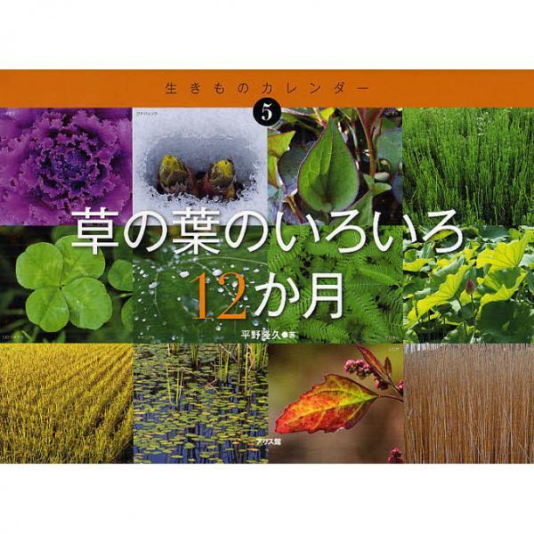 草の葉のいろいろ12か月/平野隆久/すがわらけいこ