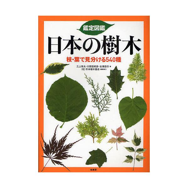 鑑定図鑑日本の樹木 枝・葉で見分ける540種/三上常夫