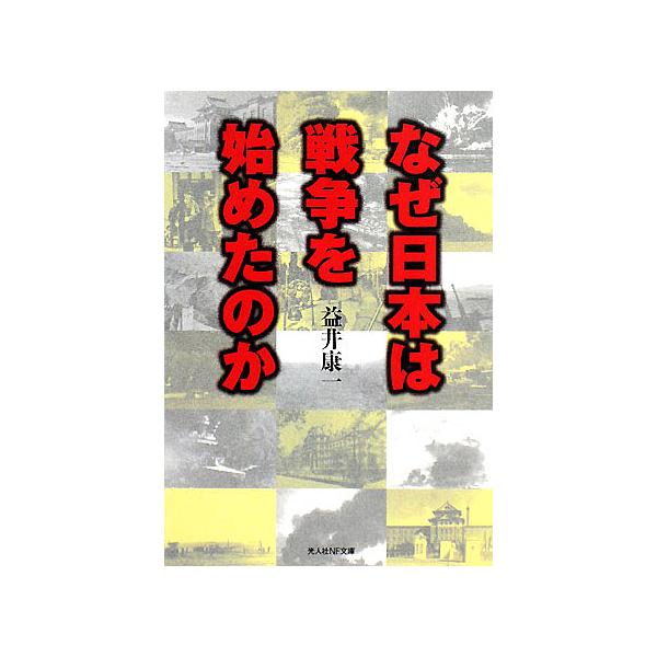 なぜ日本は戦争を始めたのか 銃剣で描いた王道楽土の夢と結末/益井康一