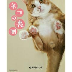ネコの裏側/芳澤ルミ子