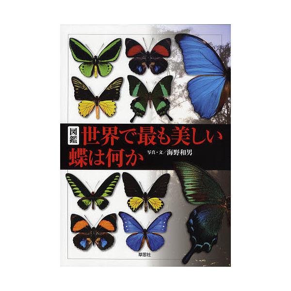 図鑑世界で最も美しい蝶は何か/海野和男