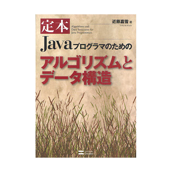 定本Javaプログラマのためのアルゴリズムとデータ構造/近藤嘉雪
