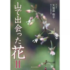 山で出会った花 2/矢加部和幸/・文熊日情報文化センター