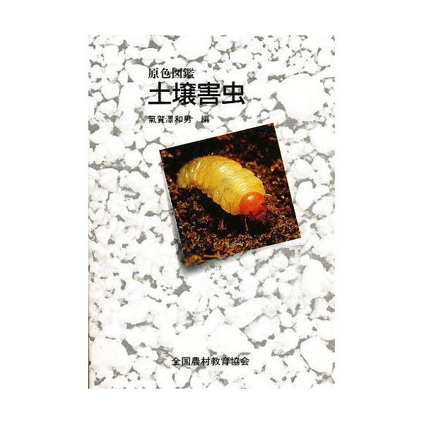 土壌害虫/氣賀澤和男