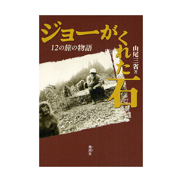ジョーがくれた石 12の旅の物語 新装版/山尾三省
