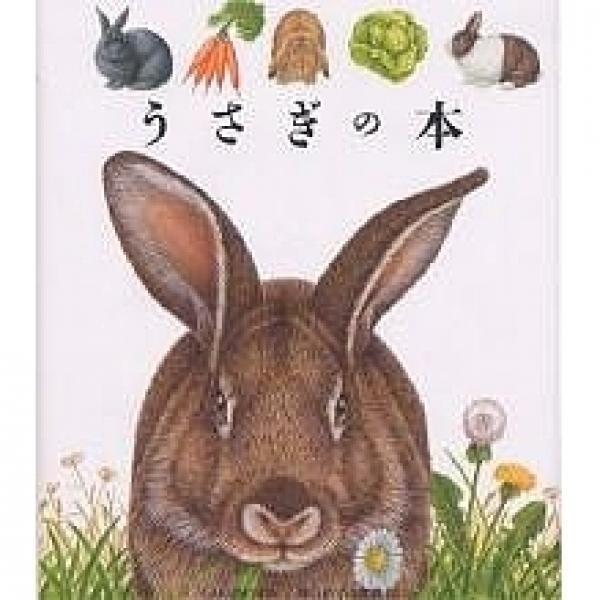 うさぎの本/ピエール・ド・ユーゴー/手塚千史