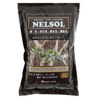 水で練って固まる土 ネルソル 1L 多肉植物 壁掛 枕木 流木