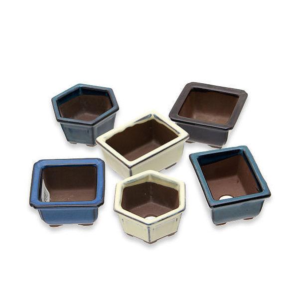 おまかせ鉢 山野草用 小鉢 3号 山野草 植木鉢 ミニミニ盆栽鉢