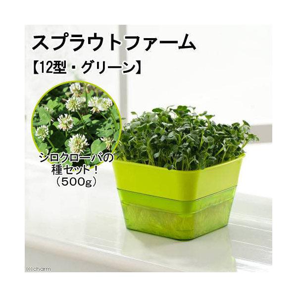 スプラウトファーム 12型 グリーン シロクローバの種セット 水耕栽培 家庭菜園