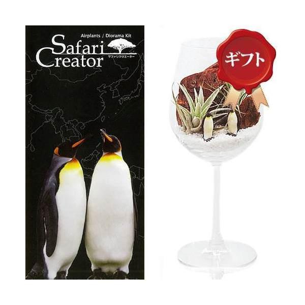 (観葉植物)エアープランツ「サファリ クリエーター」 ~ペンギン~(1セット) ギフト仕様