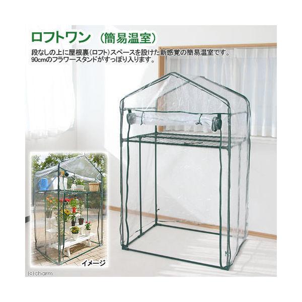 ロフトワン 簡易温室 100×155×71cm 簡易温室