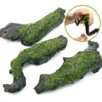 (水草)巻きたて ウィローモス 流木 Mサイズ(約20cm)(無農薬)(1本)