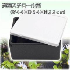 お一人様3点限り 発泡スチロール箱 本体(黒)とフタ(白)のセット(幅43×奥行き35×高さ22cm)