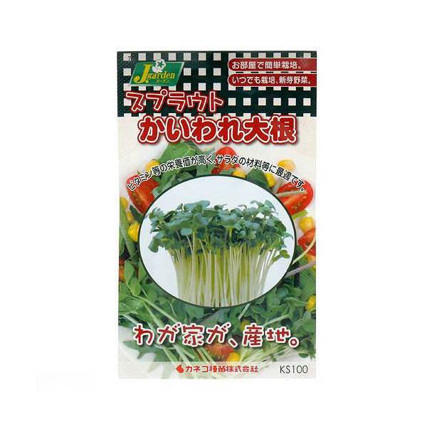 スプラウトタネ かいわれ大根 KS100-751 カネコ種苗 家庭菜園