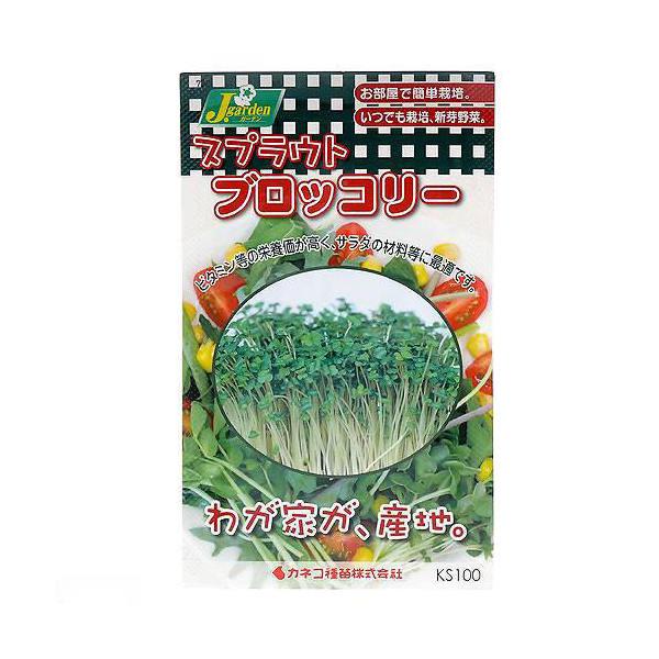 スプラウトタネ ブロッコリー KS100-752 カネコ種苗 家庭菜園