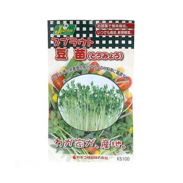 スプラウトタネ 豆苗(とうみょう) KS100-753 カネコ種苗 家庭菜園