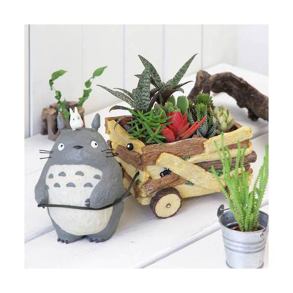 (観葉植物)ジブリプランターの多肉寄せ植え ~となりのトトロ 花車ごっこ~ 作成セット 沖縄別途送料 お一人様5点限り