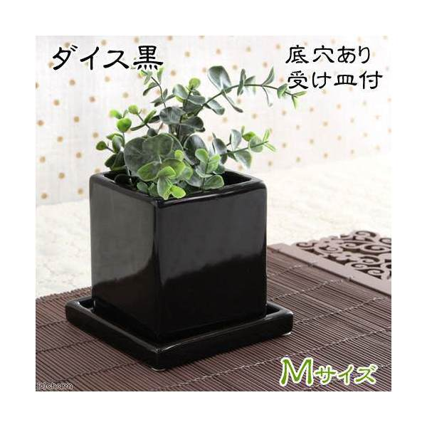 ダイス M 黒(穴有り・受け皿付)(W9.5×D9.5×H10.5cm)