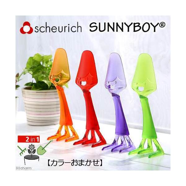 scheurich シューリッヒ サニーボーイ 1個(カラーおまかせ)