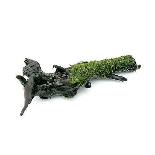 (水草)巻きたて ウィローモス 流木 Lサイズ(約25cm)(無農薬)(3本) 沖縄別途送料 北海道航空便要保温