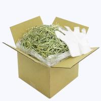 おまかせチモシー + ビニール手袋付き(段ボール箱) 1kg 牧草 うさぎ 小動物