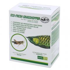 プロバグズ 真空生昆虫 グラスホッパー 1箱(8匹×10袋入) PROBUGS ECO-FRESH GRASSHOPPER