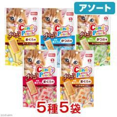 アソート キャネット キャンディーパウチ プリッと仕立て 48g 5種各1袋 猫 おやつ