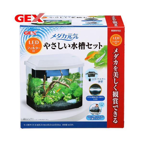 GEX メダカ元気 LED+フィルター付 やさしい水槽セット 初心者